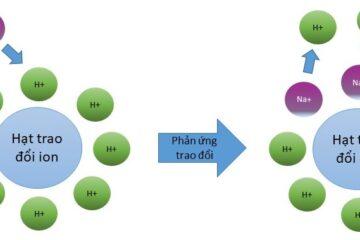 Hạt trao đổi ion là gì